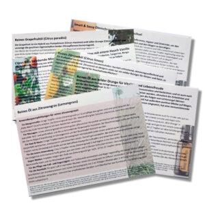 Anwendungsempfehlungen 6 belebende Zitrusöle